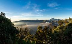 Sunrise at Mount Bromo (Quentin K) Tags: bromo indonesia volcanoe fog cloud sand east java sulfur landscape sunrise color contrast