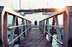 The sweetest. (Manon Vacher) Tags: manonvacherphotographie film filmcommunity filmphotography fd50mm18 filmdiary travel traveldiary wanderlust wandering sunset sunlight summer sunsetchaser portugal goldenhour goldentime goingaway