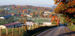 Fall in Amish Country  5795 (intricate_imagery-Jack F Schultz) Tags: jackschultzphotography intricateimageryphotography amishcountry ohioamish southeasternohio fallcolor amishfarm