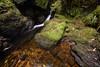 Water Escapes (Click And Pray) Tags: managedbyclickandpraysflickrmanagr pucksglen argyll scotland scottish landscape landscapeformat downstream stream waterfall river gorge rocks moss green transparent longexposure pucksglenargyllscotlandscottishlandscapelandscapeformatdownstreamstreamwaterfallrivergorgerocksmossgreentransparentlongexposuregbr