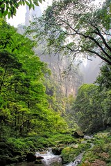 Zhangjiajie  (cattan2011) Tags: nationalpark park zhangjiajie china mountainscape mountains waterscape travelblogger traveltuesday travel natureperfect naturephotography nature landscapephotography landscapes