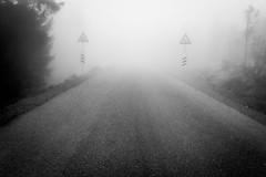 Twins in the mist (Ignacio Martnez) Tags: alemania deutschland germany harz senderismo wandern