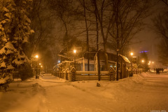 03-12-2016-6.jpg (Elen_L) Tags: december europe kharkov park beauty city evening ice lights nature snow travel walk winter украина харьков вечер город декабрь зима красота мойгород мороз огни прогулка снег