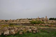 Selinunte (Sicilia-Italia). Ruinas de los templos F y G desde le Templo E o de Hera