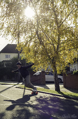 AUTUMN FREERIDE (charlieallen.77) Tags: skate skateboard trees yellow green sunflare action sport actionsport autumn essex longboard longboarding