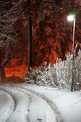 Where's Wally? O est Charlie ? (patrick.tafani) Tags: snow outside chemin path nuit night clairagepublic light sude sweden sverige