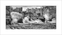The Malecon (tkimages2011) Tags: malecon havana cuba water waves wet buildings city mono monochrome atlantic ocean sea wall promenade oldhavana habana storm windy