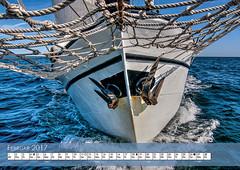 Bisschop van Arkel Sailing Experience 2017 Summary (Jan Altenschmidt) Tags: tallship segeln topsailschooner segelschiff traditionalships schooner kalender2017 sailing