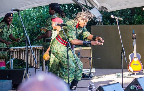 Jah Prayzah Concert, Cape Town
