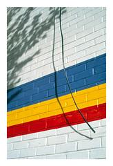 (Michael Raymond Lund) Tags: color photography slide film e6 chrome provia 100f fuji fujichrome nyc new york city urban abstract brooklyn slr 50mm zuiko 35mm analog
