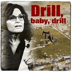 American Icons: Palin (mdt1960) Tags: sarahpalin quotes politics drillbabydrill gop patriot assclown collage