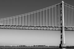 the bridge (micurs) Tags: sanfrancisco california ca bridge blackandwhite usa landscape us unitedstates bayarea