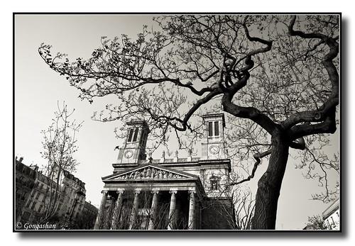 L'arbre et Saint Vincent-de-Paul