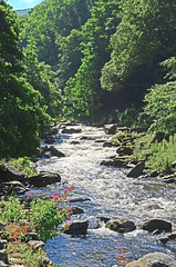 The East Lyn River, Lynmouth, North Devon. (Phajus) Tags: lynmouth watersmeet exmoor exmoornationalpark eastlynriver