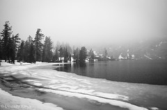 May Lake in the Snow (lindsay_kaun) Tags: california mountains landscapes yosemitenationalpark tiogaroad