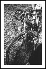 bike (Roberto Messina photography) Tags: 35mm rodinal canonet28 adoxcms20