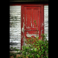 The Old Red Door (sminky_pinky100 (In and Out)) Tags: canada abandoned novascotia reddoor peelingpaint schoolhouse omot cans2s