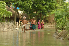 Floods hit many parts of the Bihar (CSE Environment Photo Gallery) Tags: india flood monsoon rainfall bihar naturaldisasters csepictures cseenvironmentphotogallery