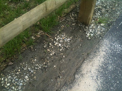 6819760115_61ae924e3a (Stormwater Maintenance, LLC) Tags: problem sediment filterstrip sheetflow
