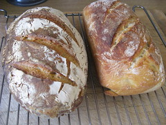 Photo of more sourdough