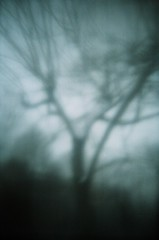 (Your Heart's Desire) Tags: mist eerie disposablecamera destroyed ghostslivehere