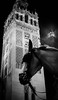 The Night Watch (Raggedjack1) Tags: horse night giralda sevillan santaiglesiacatedral