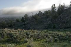 Morning breaks (Rocky Pix) Tags: mountain rockies pix rocky 55mm handheld wyoming nikkor pastoral f11 morningbreaks rockypix 1100thsec normalzoom wmichelkiteley 2470mmf28f28g northforkofthelittlemedicinebowcreek