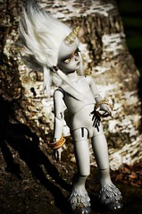 Silver and Gold (Eldurwen) Tags: ball asian grey hands doll dolls skin gray pony cal troll bjd resin soom hybrid unicorn dappled abjd joint dapple joints rpi bygg jointed balljointed skintone grayskin pipos beyla greyskin