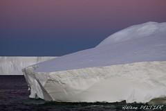 TA2011-01098 (Hlne Peltier) Tags: antarctica iceberg adelieland