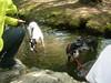 arboretum2010036