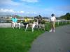 DeerIsland09-25-2011016