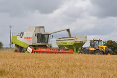 Claas Lexion 480 Combine Harvester unloading Spring Barley to a Cross Engineering Chaser Bin Drawn by a JCB 3185 Tractor (Shane Casey CK25) Tags: county tractor field barley by work golden spring corn nikon jcb cross farm cork farming grain working harvest grow straw engineering bin till combine land 480 growing farmer agriculture drawn dust harvester tilling chaser unloading claas agri d90 lexion tillage 2013 3185