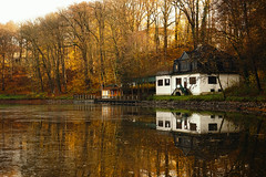 The Autumn Mirror (Mysterious Lens) Tags: camera autumn trees light two brown white house lake reflection nature water beautiful yellow forest germany season landscape photography golden daylight europe sony f8 hdr a7 ilce7