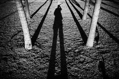 #7 Self-portrait (unoforever) Tags: street people blackandwhite bw espaa selfportrait man tree blancoynegro monochrome spain gente candid streetphotography bn rbol cs streetphoto autorretrato hombre castellon castelln fotografadecalle spmonochrome streetrepeat