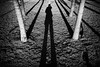 #7 Self-portrait (unoforever) Tags: street people blackandwhite bw españa selfportrait man tree blancoynegro monochrome spain gente candid streetphotography bn árbol cs streetphoto autorretrato hombre castellon castellón fotografíadecalle spmonochrome streetrepeat