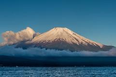Morning sun shines Fuji (shinichiro*) Tags: japan spring fuji may  crazyshin yamanashi lakeyamanaka  2015     afsnikkor2470mmf28ged nikond4s 20150521ds11264