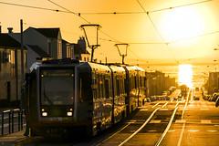 Taraval Sunset (alittlegordie) Tags: taraval sanfrancisco sf sunset muni lightrail train sony sigma