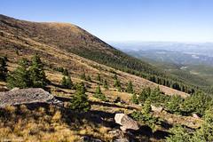 Treeline on Pikes Peak (isaac.borrego) Tags: uploadedviaflickrqcom mountains peaks alpine treeline tundra pikespeak frontrange rockymountains colorado canonrebelt4i