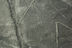 Spider Figure Mysterious Nasca Lines Peru South America (In Memoriam Ngaire Hart) Tags: peru southamerica nasca nazca nascalines nazcalines mysterious historical ancient biomorphs geoglyphsgeometric forms triangle spiral circle trapezoid plant animal hummingbird monkey spider aerial aerialview geology plains rocks gravel sand dust arid dry incavalley panamericanhighway nazcavalley birds beasts strange symbols eriagn ngairelawson ngairehart travel photography texture exploreunexplored