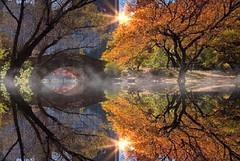 Gapstow Bridge, Central Park.         Karl Tepfer (Karl Tepfer) Tags: reflection beautifulscenery midtown karltepfer gapstowbridge manhattan newyorkcity karltepfercom tepfer oasis fallcolorful centralpark