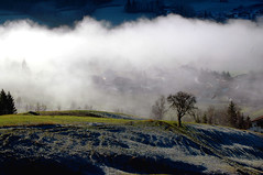 Sun and fog .... (JohannesMayr) Tags: nebel fog wolken clouds rauhreif baum bume bhl alpsee immenstadt bayern bavaria germany deutschland