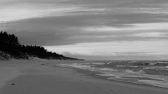 Baltic shore (Darek Drapala) Tags: baltic shore sea seashore seascape bw blackwhite blackandwhite nature sand clouds panasonic poland polska panasonicg5 water waterscape