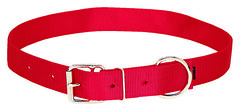 358002RD (Sharp Show Supply) Tags: 358002rd beef dairy hobble lead livestock neck nose red strap