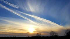 new journeys.... (BillsExplorations) Tags: sunset countryskies country clouds sky contrails rural silhouette tree landscape fall autumn airplane ohareairport