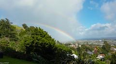 Rainbow Auckland (Mykiwiexperience) Tags: rainbow arcenciel auckland city ville jour voyage