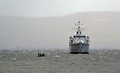 HMS Hurworth (Zak355) Tags: hmshurworth m39 navy royalnavy riverclyde bute rothesay isleofbute ship boat vessel shipping minesweeper minehunter