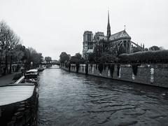 Notre Dame (Jim Nix / Nomadic Pursuits) Tags: europe jimnix lightroom luminar macphun nomadicpursuits notredame olympus olympusomdem1 paris riverseine blackwhite cathedral landmark monochrome photography travel