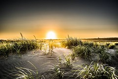 Sol (jeanmarie's photography) Tags: sky washingtonstate oceanshoreswa sand outdoors shore beach nikond810 nature nikon landscape jeanmarie jeanmariesphotography jeanmarieshelton sunset