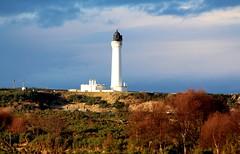 Covesea Lighthouse (calzer) Tags: covesea lighthouse lossiemouth moray scotland uk december light stevenson 1846 built trees canon