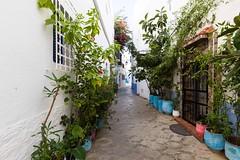 Assilah-30 (bollene57) Tags: 2016 assilah marokko marokko2016 asilah